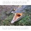 American Crocodile (Crocodylus acutus), yawning. Underneath the Crocodile Bridge, RioTarcoles, Costa Rica Photo by Hal Brindley
