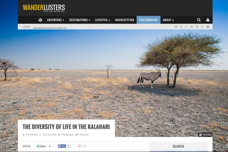 screen grab of Hal Brindley's guest post on Wanderlusters.com